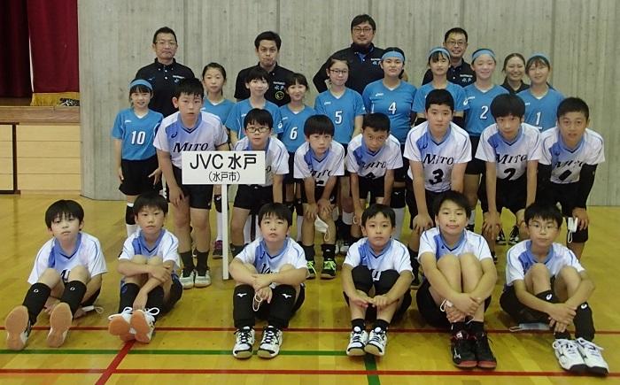 日本 小学生 バレーボール 連盟